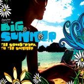 Big Summer de Various Artists