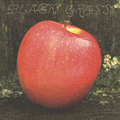 Black Grass de Little Wings