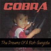 The Dreams of a Rich Gangsta by Cobra