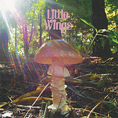 Last de Little Wings