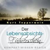 Der Lebensabsichts-Führerschein - Kompakt-Wissen Basics by Kurt Tepperwein