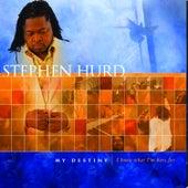 My Destiny by Stephen Hurd
