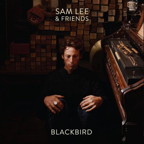 Blackbird by Sam Lee
