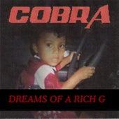 Dreams of a Rich G by Cobra