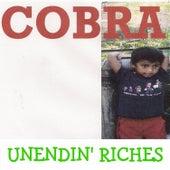 Unendin' Riches by Cobra