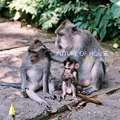 Future of House II von Various Artists
