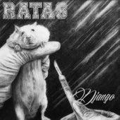 Ratas de Django