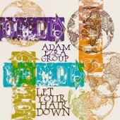 Let Your Hair Down de Adam Ezra