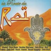 La route du raï by Various Artists