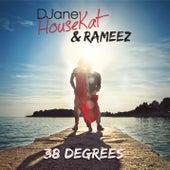 38 Degrees von DJane HouseKat