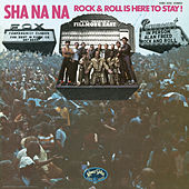 Rock & Roll Is Here to Stay de Sha Na Na