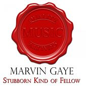 Stubborn Kind of Fellow - Quality Music de Marvin Gaye