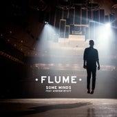 Some Minds de Flume