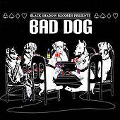 Black Shadow Records Presents: Bad Dog de Various Artists