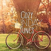 Cozy Sunday Tunes, Vol. 2 (Finest Relaxing & Hang Out Music) by Various Artists
