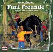 040/und das verschwundene Pferd von Fünf Freunde