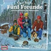 093/und das Geheimnis des Winterwaldes von Fünf Freunde