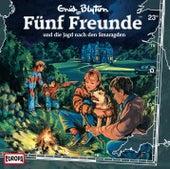 023/und die Jagd nach den Smaragden von Fünf Freunde