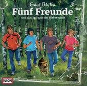 104/und die Jagd nach der Diebesbande von Fünf Freunde