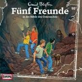 095/in der Höhle des Urmenschen von Fünf Freunde