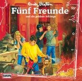 055/und die goldene Schlange von Fünf Freunde