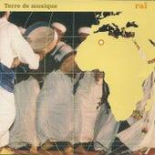 Raï, terre de musique by Various Artists
