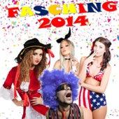 Fasching 2014 von Various Artists