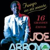 Fuego en Mi Mente de Joe Arroyo y La Verdad