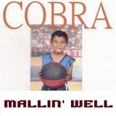 Mallin' Well by Cobra