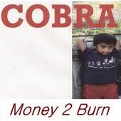 Money 2 Burn by Cobra