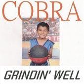 Grindin' Well by Cobra