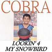 Lookin' 4 My Snowbird by Cobra