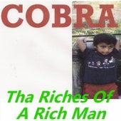 Tha Riches of a Rich Man by Cobra
