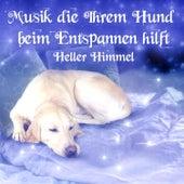 Musik die Ihrem Hund beim Entspannen hilft von Heller Himmel