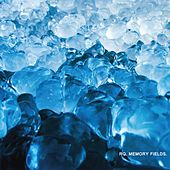 Memory Fields by Rq