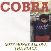Gots Money All Ova Tha Place by Cobra