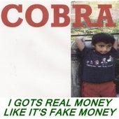 I Gots Real Money Like It's Fake Money by Cobra