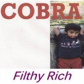Filthy Rich by Cobra
