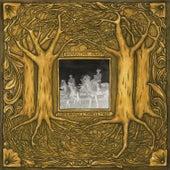 Under Branch & Thorn & Tree by Samantha Crain