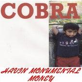 Havin' Monumental Money by Cobra