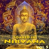 Soaked In Nirvana, Vol.5 von Dune