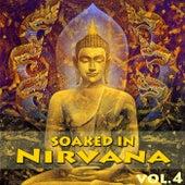 Soaked In Nirvana, Vol.4 von Dune