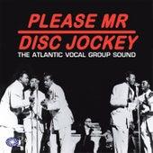 Please Mr Disc Jockey: The Atlantic Vocal Group Sound von Various Artists