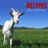 Tres Cabrones de Melvins