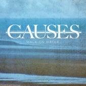 Walk on Water de Causes