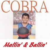 Mallin' & Ballin' by Cobra