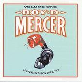 How Big'A Boy Are Ya? Vol. 1 by Roy D. Mercer