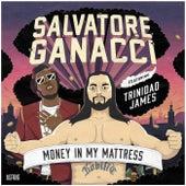 Money In My Mattress van Salvatore Ganacci