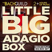 Little Big Box: Adagios by Various Artists