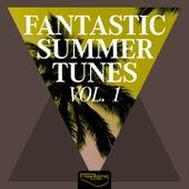 Fantastic Summer Tunes, Vol. 1 de Various Artists